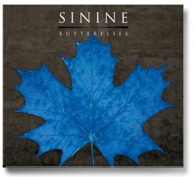 a113_sinine_butterlies