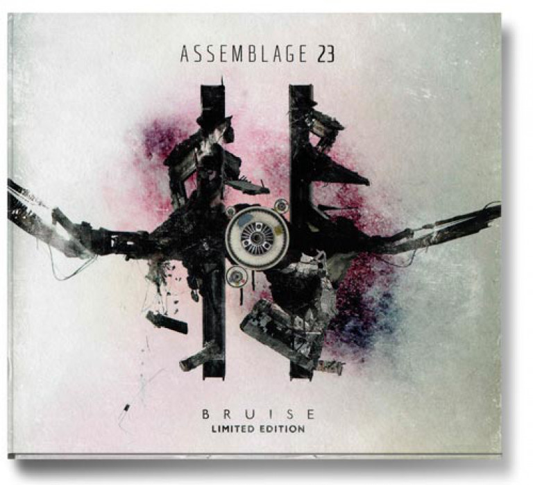 a0129_Assemblage23_bruise_ltd_edition