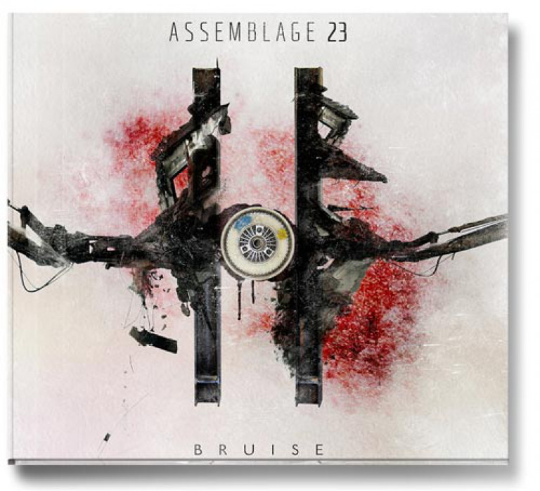 a0129_Assemblage23_bruise