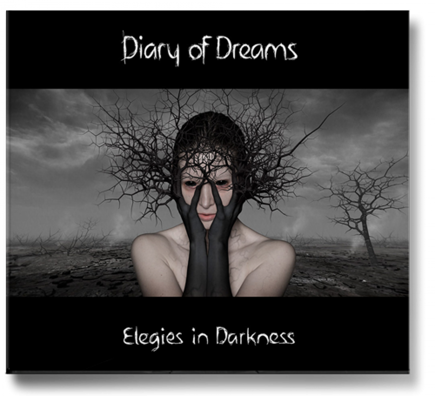 a0137_dod_elegies_in_darkness